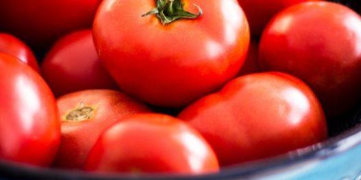 stock-tomatoes